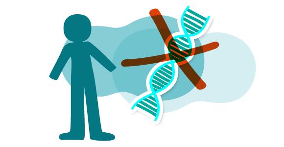 imagen-genes